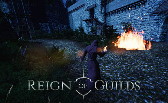 Reign of Guilds
